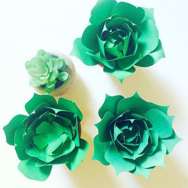 Green paper succulents top view